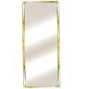 Mylar Door Mirror Rectangle 30_ (BD)