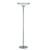 Dome Floor Lamp LS-8225PS/FRO (LS)