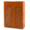 2-Door Shoe Cabinet SC-30_ (CRUFS95)