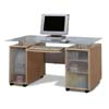 Contemporary Design Computer Desk 800001 (CO)