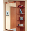 Sliding Door Wardrobe Baikal-6 (ACE)