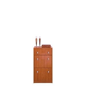 Shoe Cabinet SB-236(ACEFS65)