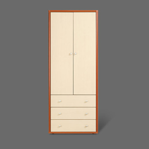 2-Door 3-Drawer Wardrobe SB-311(ACE)