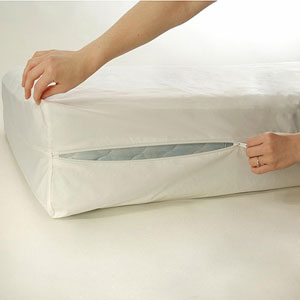 Zippered Mattress Protector RN24658(EAFS)